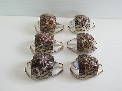 6 Tiger Cowrie Shell Napkin Rings