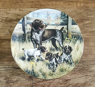 German Shorthaired Pointer GSP Classic Sporting Dogs Plate Limited Edition EUC