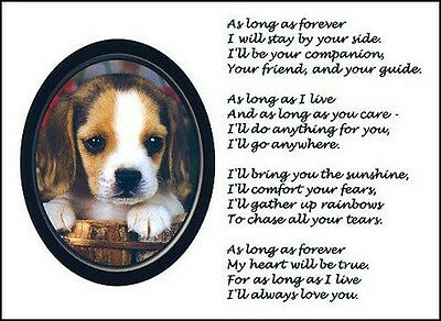 """Beautiful BEAGLE print """"AS LONG AS FOREVER"""" picture photo verse art poem NEW!"""