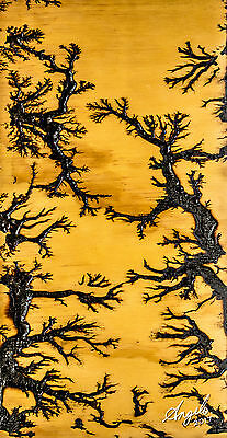 High Voltage Electricity Wood Burn Pyrography Lichtenberg Fractal Art Design #2