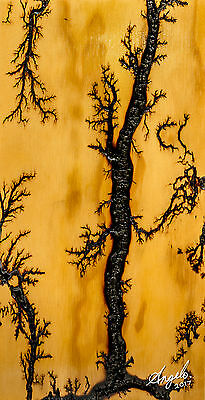 High Voltage Electricity Wood Burn Pyrography Lichtenberg Fractal Art Design #5