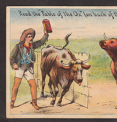 Cowboy 19th Century Advertising Card Scholes Insect Exterminator Poison Fable Ox