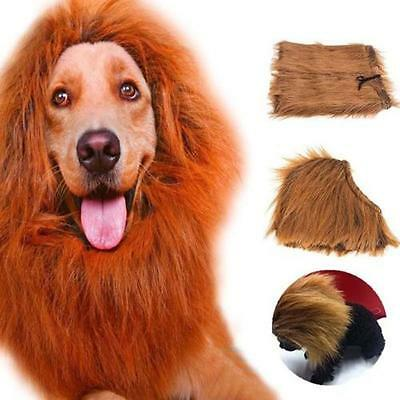 Pet Costume Lion Mane Wig Dog Halloween Sanda Clothes Fancy Dress up Brown L DC