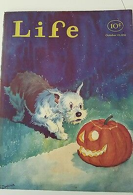 1931 Life Magazine front cover only terrier dog Halloween jack-o'-lantern