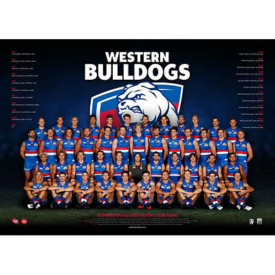 AFL 2017 Team Western Bulldogs POSTER 60x80cm NEW Aussie Football League Players