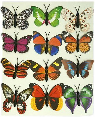 Pack of 12 Mini Magnetic Plastic Colourful Butterflies Butterfly Fridge Magnet