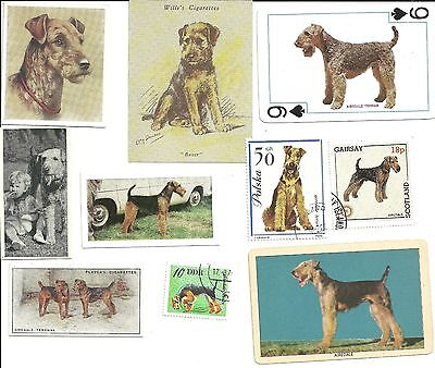 VINTAGE AIREDALE TRADE CARD AND STAMP COLLECTION 10 piece all original
