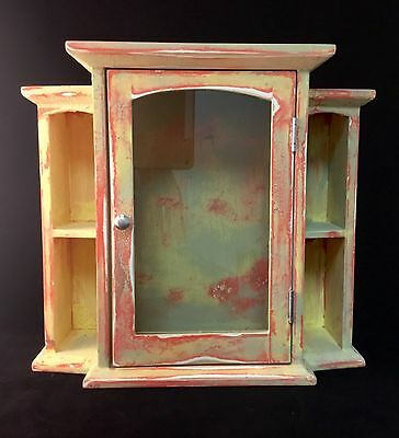 Small Curio Cabinet Distressed Rustic Oak Free Standing Coral Hinged Glass Door