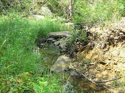 40 ACRES / HUNTING LAND in Oklahoma - Hughes County with a CREEK!