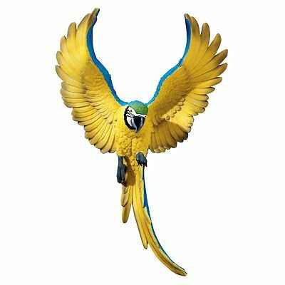Blue and Yellow Macaw Exotic Tropical Bird Parrot Island Margaritaville Decor