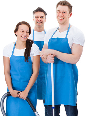 Responsive / Professional Cleaning Service- Website With Free 1 Year Domain And