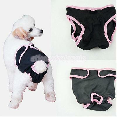 Femme Pet Dog Puppy Physiological Sanitary Short Underwear Diaper Black M