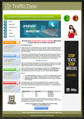 Automated Website Traffic Reseller Business + Domain Name