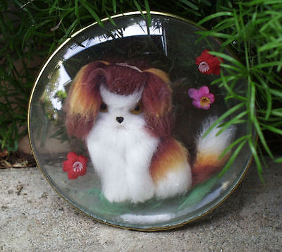 JAPANESE CHIN JAPANESE SPANIEL WOOL FELTED DOG IN CONVEX GLASS FRAME1960's JAPAN