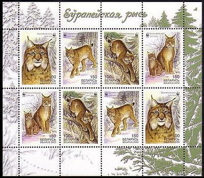Belarus WWF Eurasian Lynx Sheetlet of 2 sets / 8 stamps SG#406/09 SC#354-57