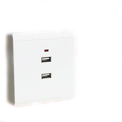 Dual USB Socket Two Holes Wall Charger Electric 220V to 5V Outlet Panel TP