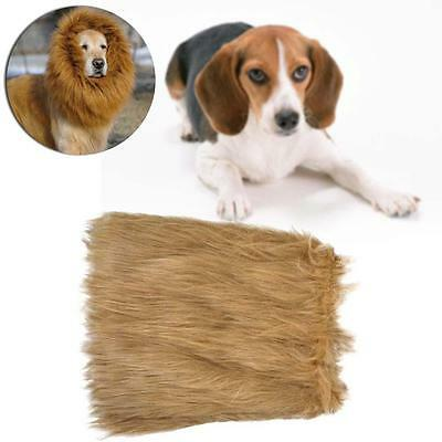 Pet Costume Lion Mane Wig Dog Halloween Sanda Vêtements Dress up Brun clair M DC