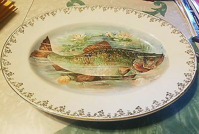Standard Esther Semi Porcelain Pheasant Design Oval Serving Plate
