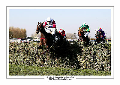 Grand National 2017 One For Arthur Derek Fox Horse Racing A4 Photo Aintree 3