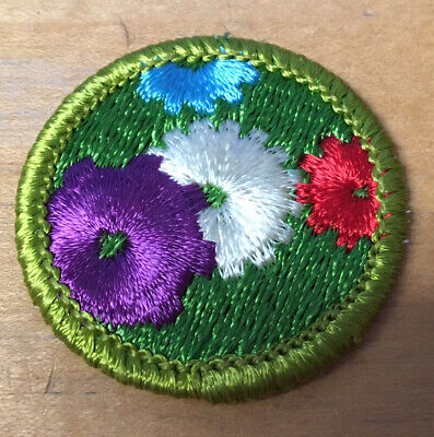 Boy Scouts Machinery Merit Badge Type H  New
