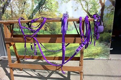 New extra nice BIOTHANE mini horse driving harness PURPLE by Frontier Equestrian