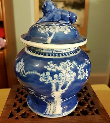 Chinese Pottery Blue and White Prunus  Foo Dog Ginger Jar Signed