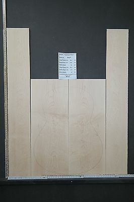 Tonewood Birdseye maple 1337 Tonholz Guitar Builder Luthier Acoustic Backs Side