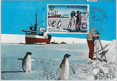 63853 - BELGIUM - POSTAL HISTORY: MAXIMUM CARD 1971 -  POLAR birds  ANTARCTIC