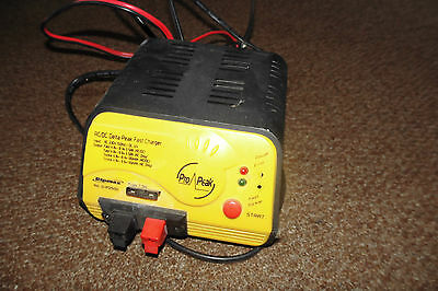 Ripmax Delta Pro Peak2500 Fast Charger Used Tested & Working Free-Post UK