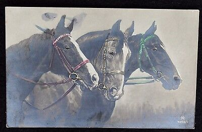 Nice Vintage Hand Coloured Postcard of 3 Horses