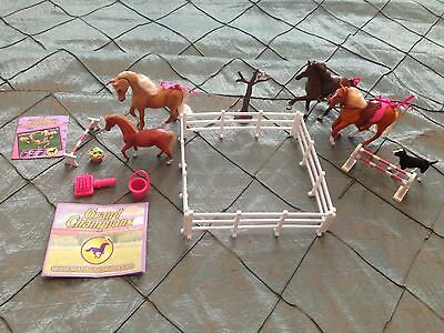 Grand Champions Horses Selle Francais Family With Accessories