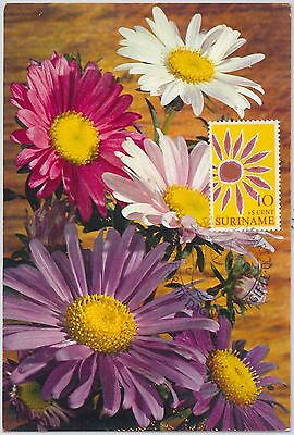 63930 -  Suriname - Postal History: Maximum Card 1970 - Flowers