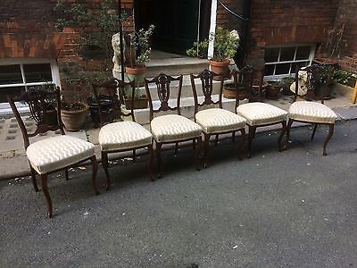 Edwardian Mahogany Dining Chairs - set of six