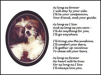 "Beautiful SHIH-TZU print ""FOREVER.."" art poem dog puppy NEW!"