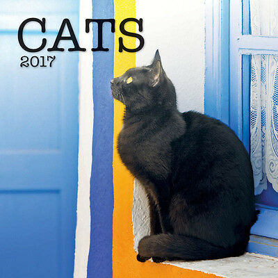 """Cats 2017 Wall Calendar by Turner/Lang (12"""" x 24"""" when opened)"""