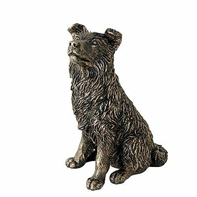 Border Fine Arts studio bronzo Collie figurine