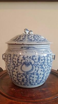 Chinese &  Blue White Peranakan Porcelain Kamcheng Lidded Pot with Lion Finial