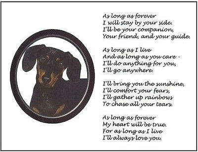 "Beautiful BLACK & TAN DACHSHUND print ""AS LONG AS FOREVER"" doxie photo poem NEW!"