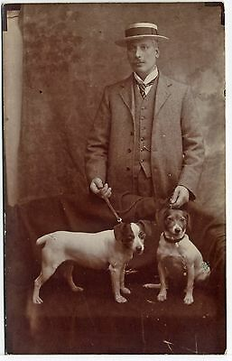 Edwardian Gentleman And His Fox Terrier Dogs Old Real Photo Dog Postcard