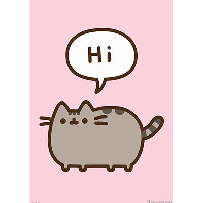 Pusheen - Hi POSTER 61x91cm NEW * Cute Cat Web Comic Grey Tabby