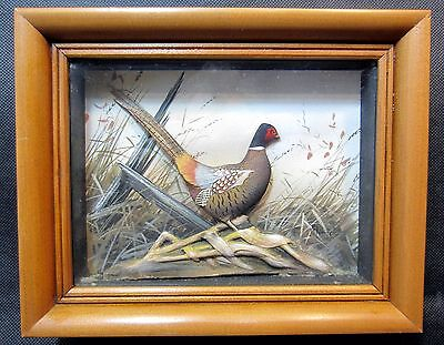 Joseph Q. Whipple Hand Painted Carved Pheasants Shadow Box - Early Piece