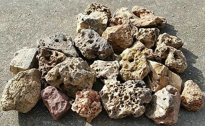 30 lbs MED River Creek Rock Stone for garden, yard pond, landscaping, rock art