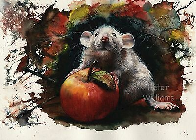 MOUSE CUTE RAT PRINTS of Original Painting ' POSSESSION ' by PETER WILLIAMS