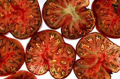 Tomato Black Sea man Great Heirloom Garden Vegetable By Seed Kingdom 100 Seeds