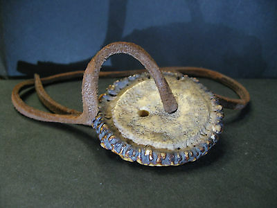 Real Japanese Netsuke Staghorn Abalone with Leather Strap Carved in Edo era 1