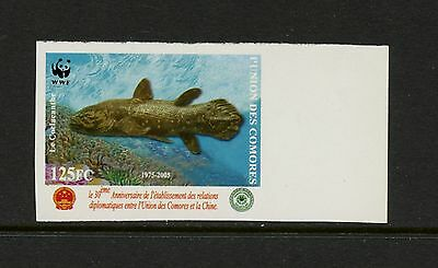Comoro Islands 2006 #980B  fish marine coelacanth IMPERF 1v.  MNH  J902