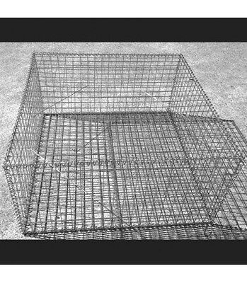 Welded Gabion 1000mm L x 1000mm W x 500mm H, 50x50x3mm, Stainless Steel 316L