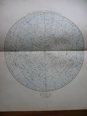 Northern Constellations Astronomy Map 1876