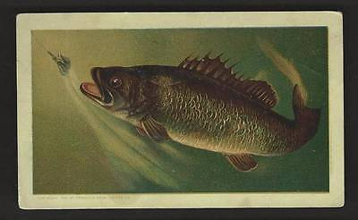 """Arbuckle's """"Ariosa"""" Coffee - Cooking Notes, Black Bass"""