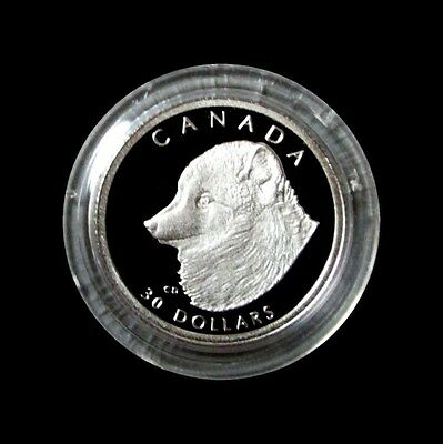 1993 Platinum Canada  Proof $30 Wildlife Arctic Foxes 1/10 Oz Only 1,000 Minted